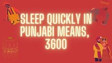 I Never Thought These Punjabi Short Forms Can Be Explained Through Maths.