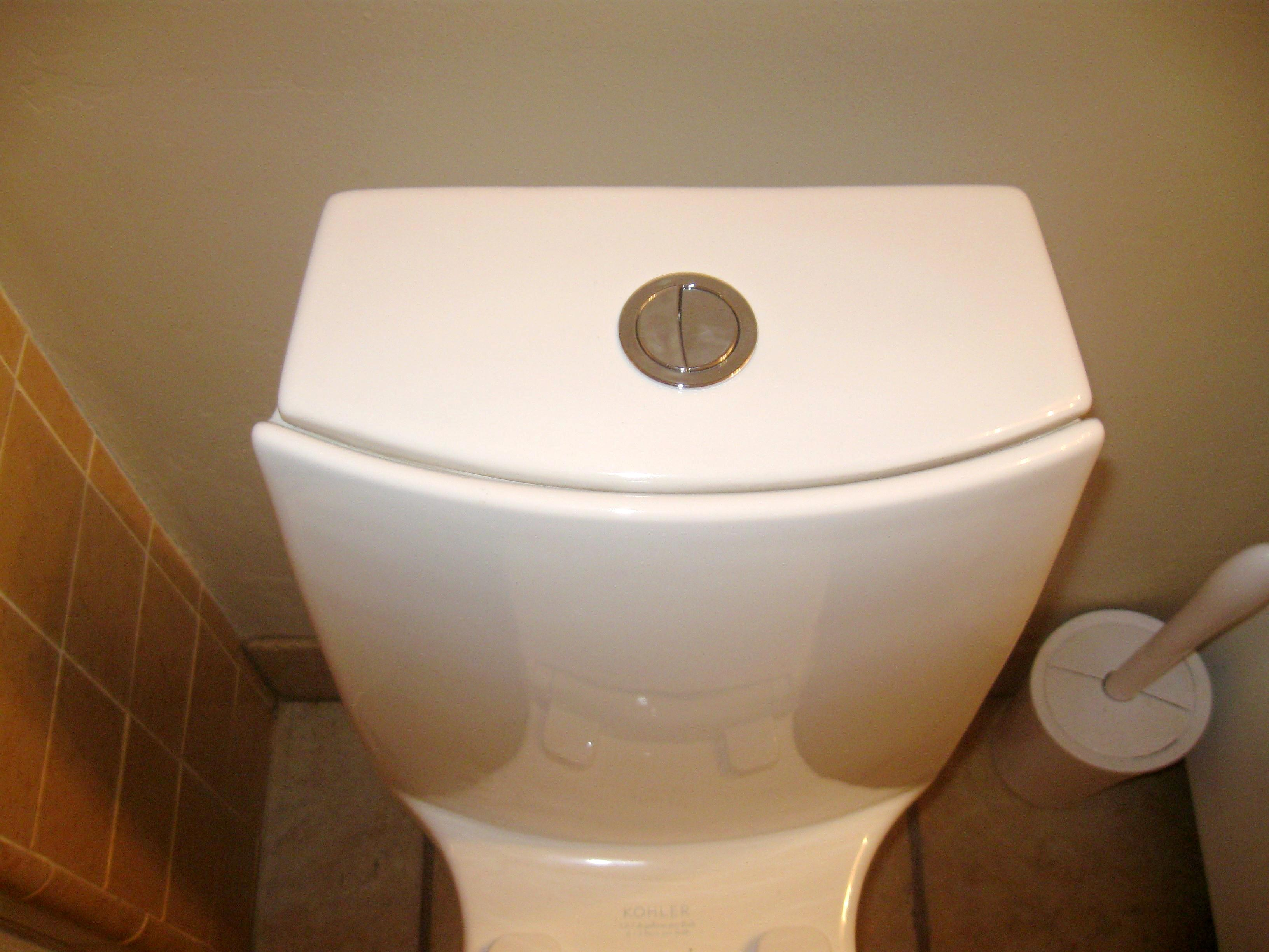 We Will Tell You Why Your Toilet Flush Has One Large And One Small ...